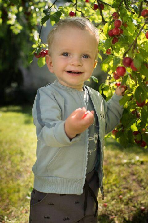 Junge trägt graue Baby Haremshose mit Taschen & Cars Autos gemustert - Mint grüne blaue Kinder Sweatjacke mit Streifen & Taschen FUN Print von Pinokio - Babyphoto Kinderphoto
