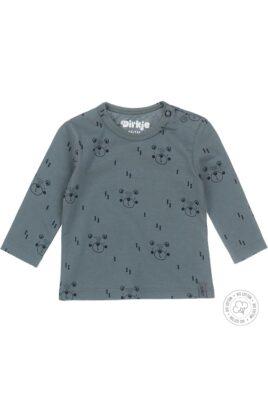 Dirkje Baby Langarmshirt OEKO-TEX Rundhalsshirt in grün mit Bären-Aufdruck & Druckknöpfen – Sweatshirt für Jungen – Vorderansicht